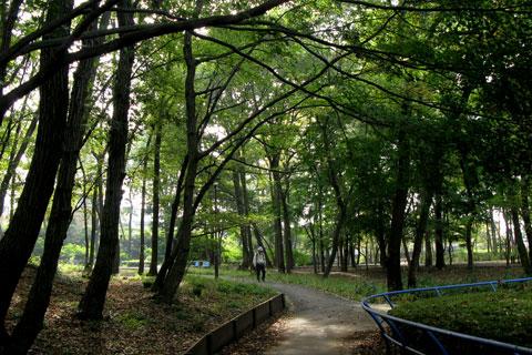 Autumn-40.jpg