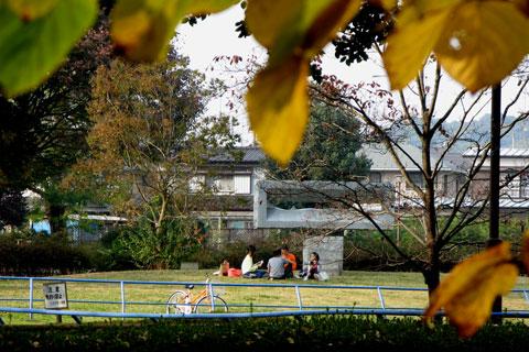 Autumn-51.jpg