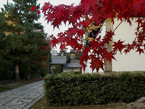 Chisyaku-09.jpg