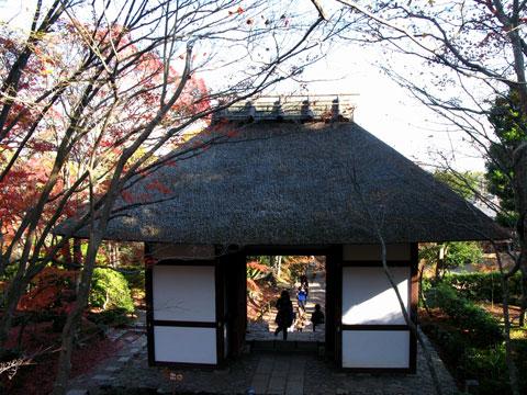 Jyo-Jyakkou-03.jpg