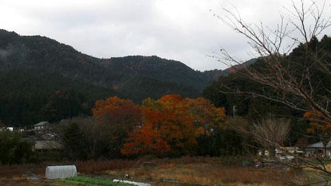 Ohara-02.jpg