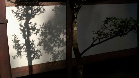 Sanzen-08.jpg